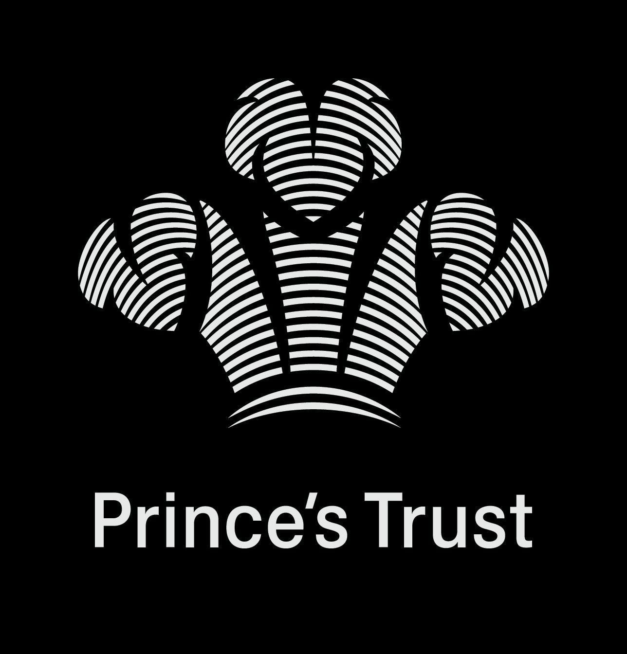 hrh the prince of wales charities the princes
